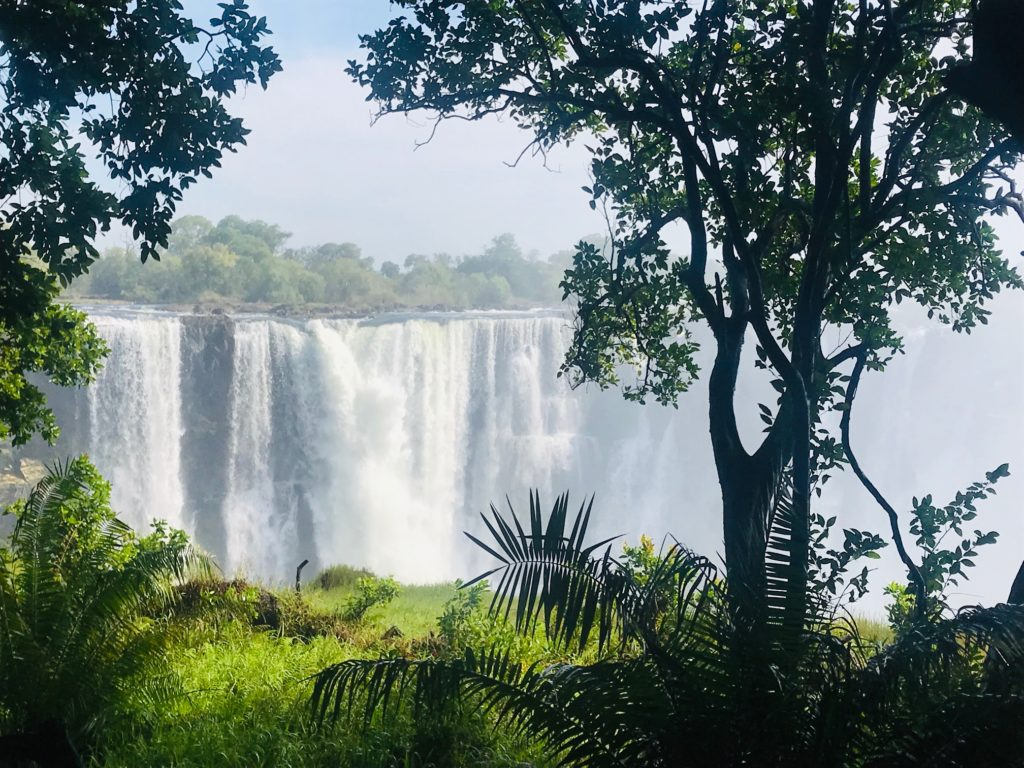 A view of the Victoria Falls from the rainforest