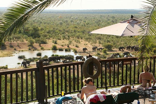 Victoria Falls Safari Lodge Specials Waterhole Facing Rooms 4